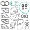 Complete gasket set with oil seal PWC 611114