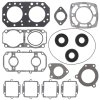 Complete gasket set with oil seal PWC 611402